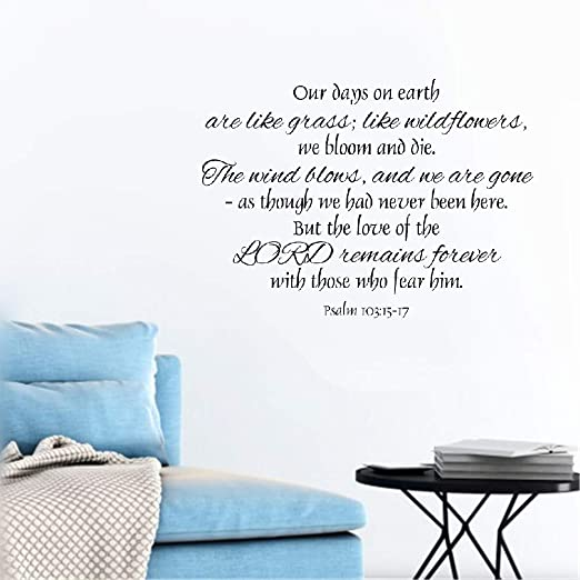 Amazon Com Wall Sticker Quote Wall Decal Funny Wallpaper