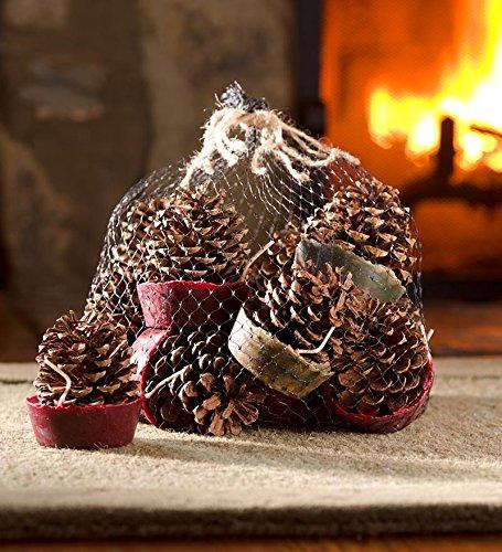 Plow & Hearth 1 Dozen Wax-Bottom Pinecones