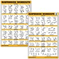Quickfit 2 Pack Suspension Workout Posters Volume 1 2 Laminated Exercise Charts 18 X 27 Vol 1 2