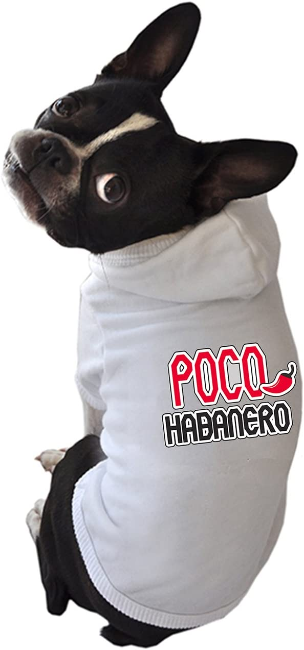 Gola Gola & Meow Perro Sudadera con Capucha, XS, Poco ...