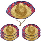 Funny Party Hats Sombrero Hats - 6 Pack -Child and Adult Sizes Costume and Dress up Hat by