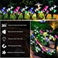 Outdoor Solar Garden Stake Lights, 5 Pack Solar Power Light with 20 Lily Flowers, Multi-Color Changing LED Solar Landscape Decorative Lighting Lamp for Garden, Patio, Yard, Lawn (white, purple, pink)