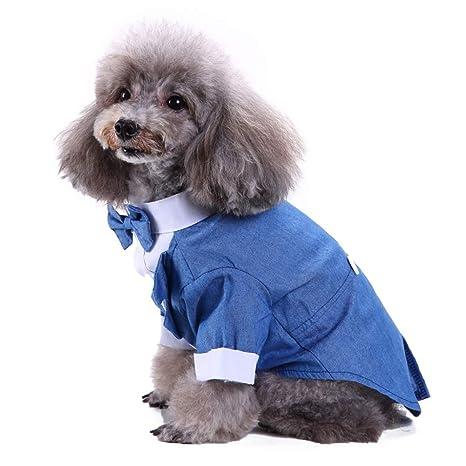 Whiie891203 Ropa para Perro, para Mascota, Perro, Boda, Traje ...