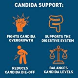 Dr Tobias Candida Support - Extra Strength