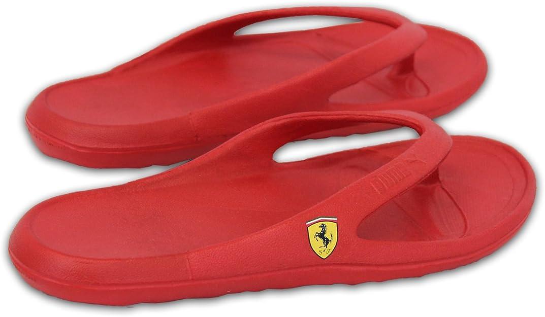 انتظر الخام تضيء Puma Ferrari Slippers Dsvdedommel Com