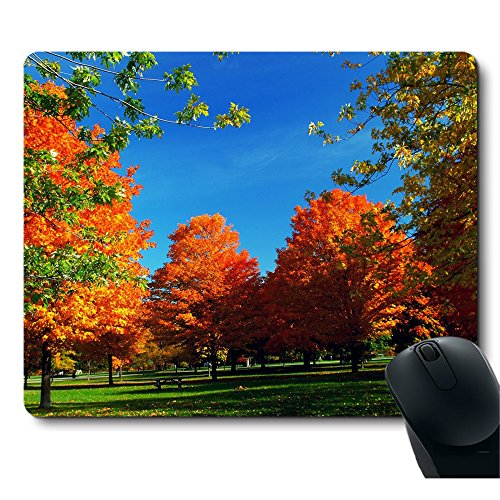 Autumn Natural Orange Fall Trees Mouse Pad