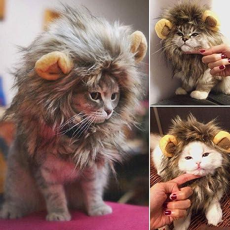 UWLion Mane para Gato, Lindo Disfraz de Mascota Peluca de león con Orejas para Gato