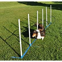 Cool Runners Ultimate Agility Weave Training Solution-Includes 6 Weave Poles with Flat to The Ground Base and Optional Guides
