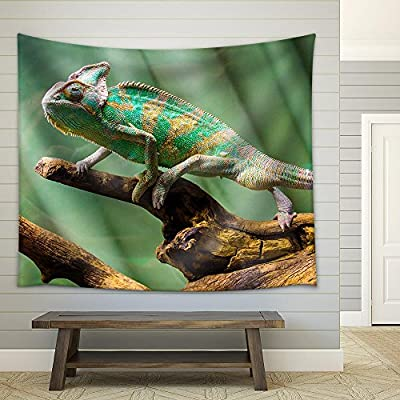 Charming Print, Chameleon Fabric Wall, Made For You
