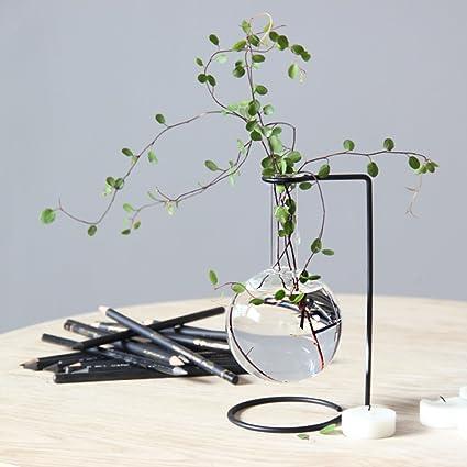 Amazon Hanging Glass Black Metal Beaker Bud Vase Flower Plant