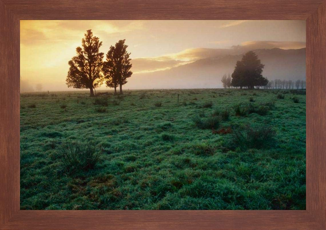 "Dawn Light Over South Island farmland, New Zealand by Andy Reisinger - 15"" x 20"" Framed Giclee Canvas Art Print Walnut Finish - Ready to Hang"