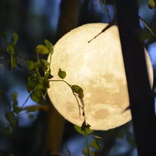 SMILEQ 3D Magical Moon Lamp USB LED Night Light Touch Sensor Moonlight  Romantic Wall Light Lunar