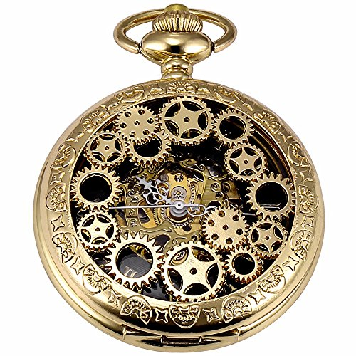 Steampunk Vintage Watch - Carrie Hughes Men's Vintage Gear Carving Roman Word Steampunk Skeleton Mechanical Pocket Watch with Chain Christmas Gifts (Gold Gear CH20)