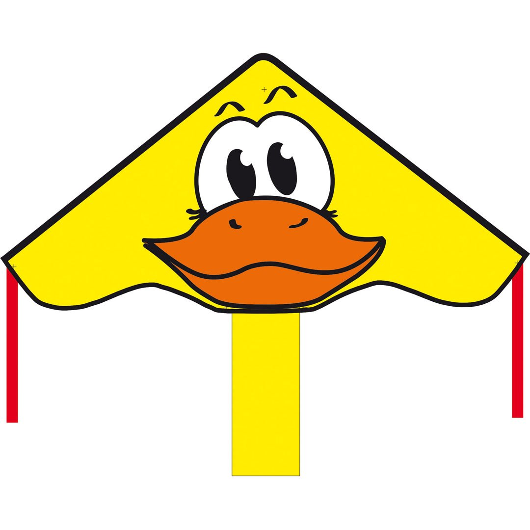 Einleiner drache Ente