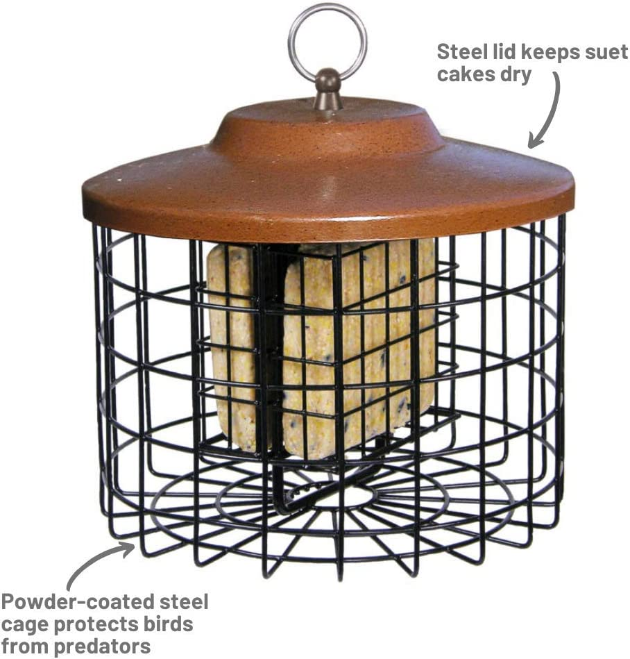 Squirrel-X Squirrel Proof Double Suet Feeder, Cage Bird Feeder, 2 Suet Cake Capacity : Suet Bird Feeders : Garden & Outdoor