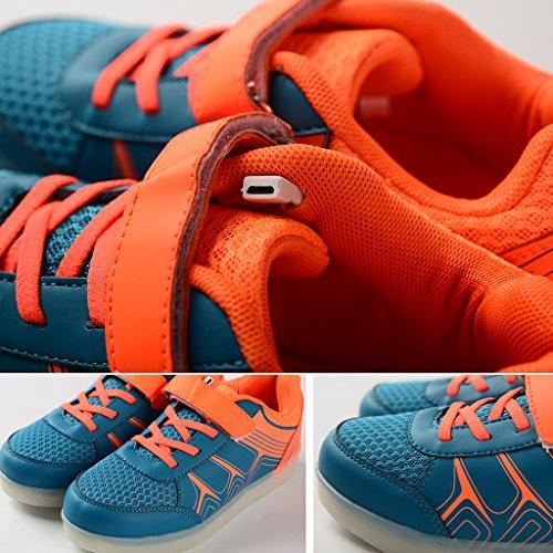 DoGeek Orange