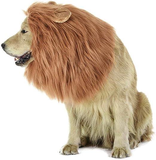 MiLuck Lion Mane peluca para perro y gato Disfraz con orejas Mascota ajustable cómodo Fancy León pelo perro ropa para Halloween Actividad de fiesta del festival de Pascua(Dog-Light Brown): Amazon.es: Productos para