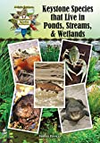 img - for Keystone Species that Live in Ponds, Streams, & Wetlands (Kid's Guide to Keystone Species in Nature) book / textbook / text book