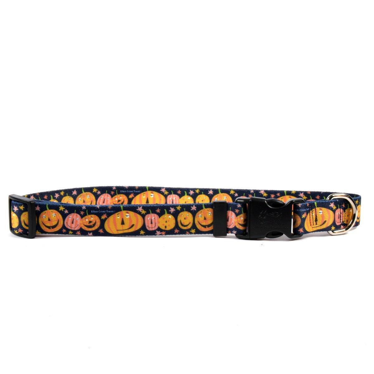 Yellow Dog Design Pumpkin Party Dog Collar, Medium-1'' Wide fits Neck Sizes 14 to 20'' Wide