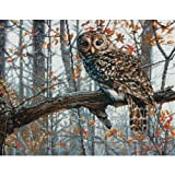 Dimensions  Crafts Counted Cross Stitch Kit, Wise Owl