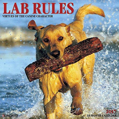 Lab Rules 2017 Wall Calendar (Dog Breed Calendars) - Lab Puppies Calendar
