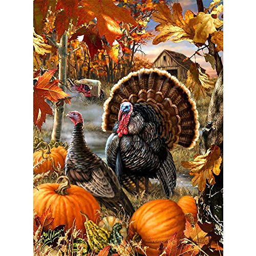 Avton Large Premium Full Drill DIY 5D Diamond Painting Kits for Adults and Kids - Adorable Pumpkin and Turkey Design - Relax and Paint with Diamonds - Art Tool Kit Includes All Accessories 16x12