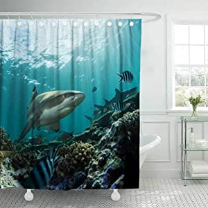 Douecish 72X78 Shower Curtain, Shower Curtain Shark Cool Shower Curtain with Hooks Waterproof Eco-Friendly Long Shower Curtain for Bathroom