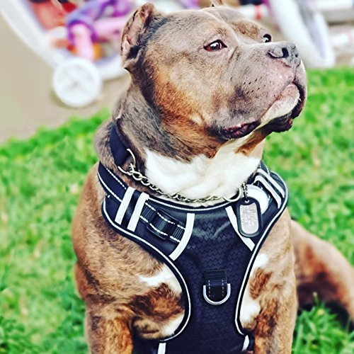 Big Dog Harness No Pull Adjustable Pet Reflective Oxford Soft Vest for Large Dogs Easy Control Harness from Babyltrl