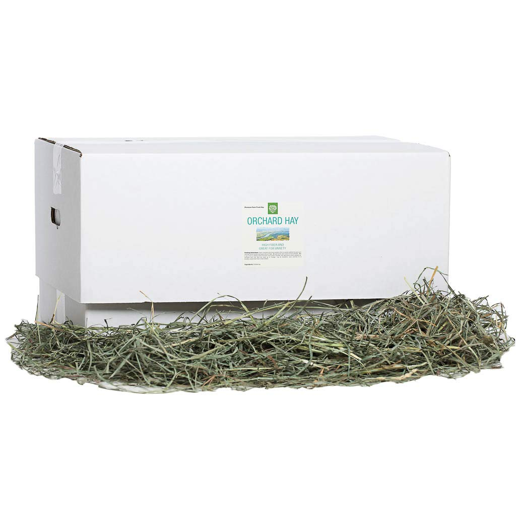 Small Pet Select Orchard Grass Hay Pet Food, 20 Lb. by Small Pet Select