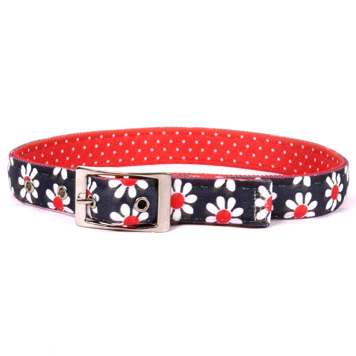 Yellow Dog Design Black Daisy Uptown Dog Collar Fits Neck 24 to 27'', X-Large/1'' Wide