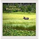 Wanderings- Music for Relaxing, meditation, gratitude, therapy, healing, massage, yoga and mindfulness
