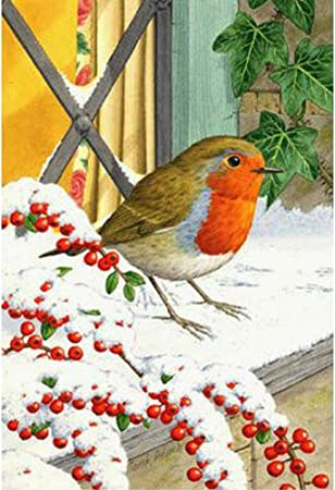 DIY Diamond Painting Belly Bird Full Drill Embroidery Cross Stitch Decor Y