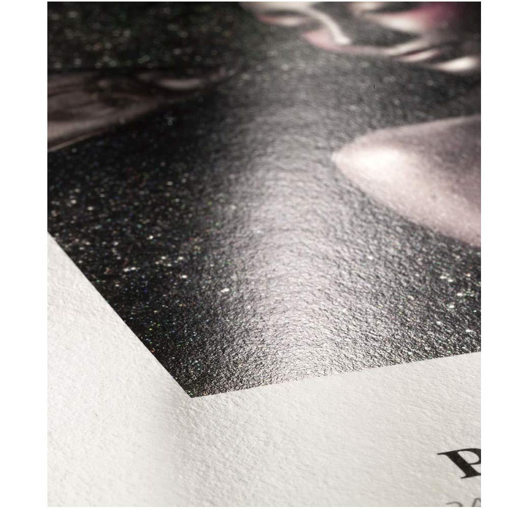 Hahnemühle Photo Rag Metallic 340gsm 17 x 22 in, 25 Sheets by Hahnemühle USA (Image #2)