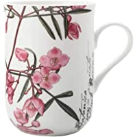 Maxwell & Williams S692105 Royal Botanic Garden Boronia Mug, 300 ml Capacity, Multicolour