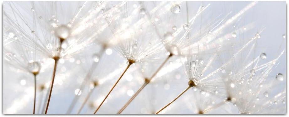 """Küche modern Wand Bild Glasbild /""""Pusteblume/"""" von DEKOGLAS 125x50 aus Acrylglas"""