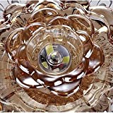 Siminda Crystal Fixture Ceiling Light 18W 7.1-Inch