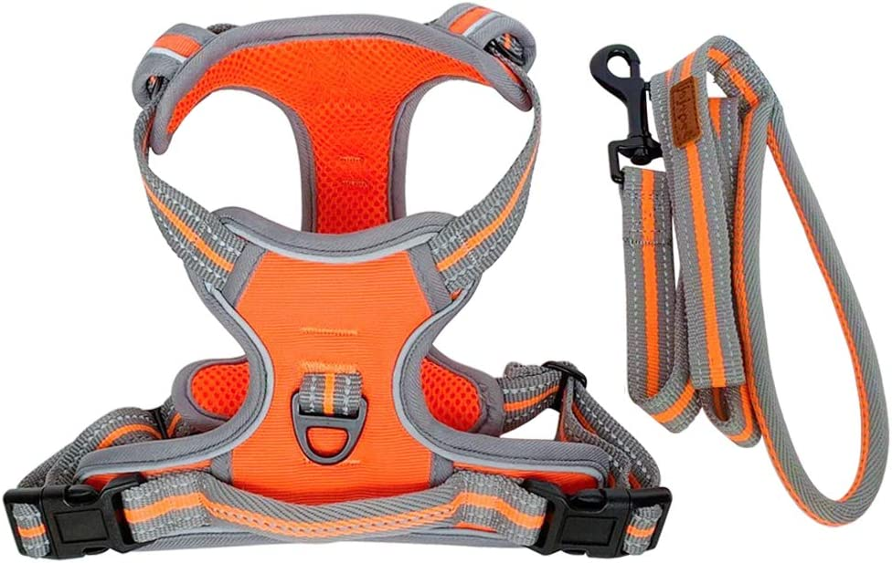 Jeeke Solid Color Pet Angel Wings Vest Harness Soft Breathable Dog Harnesses for Small Medium Large Dogs Adjustable Puppy Harness and Leash Set
