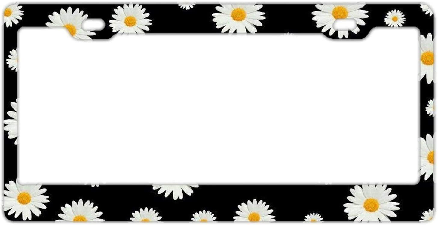 Rossne G sun License Plate Frame Car Licenses Plate Cover License Tag Metal 2 Hole and Screws