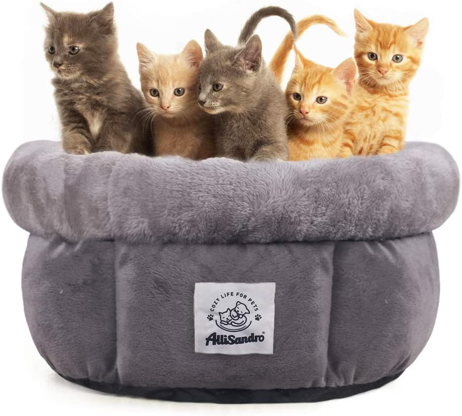 Free Amazon Promo Code 2020 for Small Pet Bed