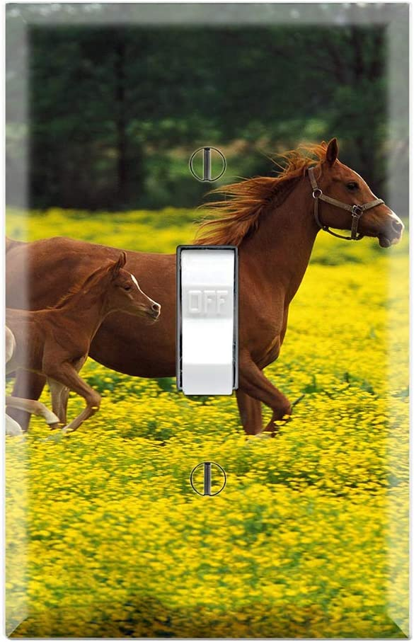 Cute Baby Horse Running With Mom Decorative Single Toggle Light Switch Wall Plate Amazon Com