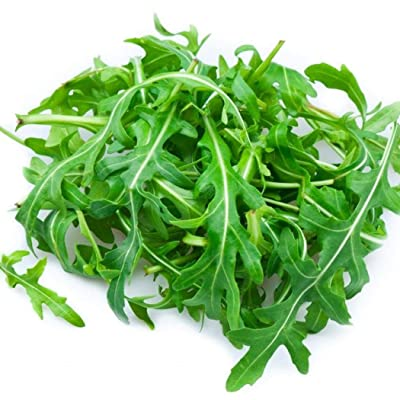 Determina Garden - Arugula Seeds - 100PCS Organic Non-GMO Heirloom Arugula (Roquette or Rocket) Seeds Heirloom Vegetable Seeds for Home Garden Balcony: Clothing