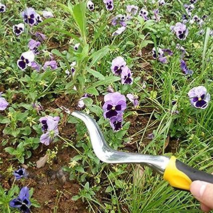 Amazon.com: Garden Hand Tools - Paleta y desbrozadora ...
