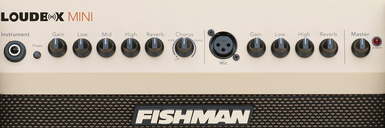 Fishman Loudbox Mini PRO-LBX-500 Acoustic Instrument Amplifier w/Bonus Dunlop DTC1 Tuner 605609154446 by Fishman
