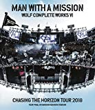 Wolf Complete Works VI ~Chasing the Horizon Tour 2018 Tour Final in Hanshin Koshien Stadium~(特典なし) [Blu-ray]