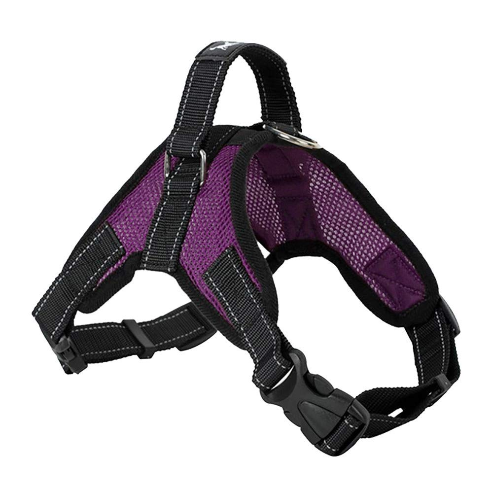 succeedtop Pet Big Dog Chest Straps TAILUP Pet Dog Leads Chest Straps Large Pet Adjustable Comfortable Outdoor Soft Breathable Dog Pet Vest (M,fit 22-44Ib, C)