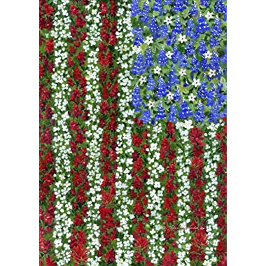 Toland - Field Of Glory - Decorative America Patriotic Flower Red White Blue USA-Produced House Flag