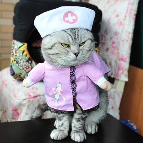 Ropa de Gato Traje de Pirata Ropa para Traje de Gato Ropa ...