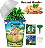 Children's Organic Plant Kit - Peanut Party Window Garden - Complete Indoor Grow Set - Seeds, Soil, Planter, Greenhouse Dome, Water Tray & Cup, Growing Guide, Diary. Unique Educational DIY Kid's Gift.