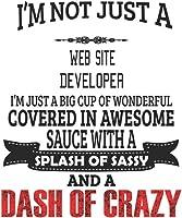 I'm Not Just A Web Site Developer I'm Just A Big