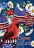 Morigins Cardinal Glory Double-Sided Decorative Patriotic Summer July 4 House Flag 28''x40''